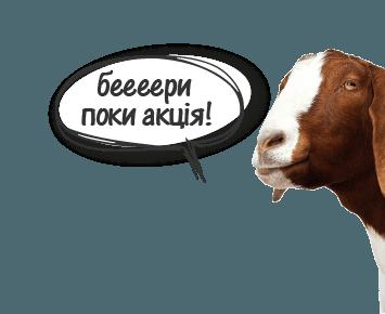 Акционная корова в ЖК Современный Квартал